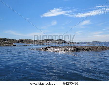 the swedish westcoast one beutiful summerday the ocean is very still