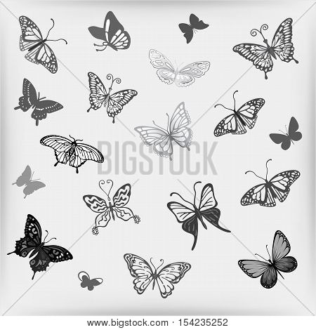 Grey butterfly logo set vector illustration isolated on background