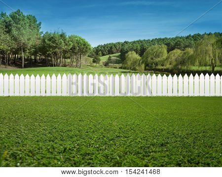 White fences on green grass and the trees behind