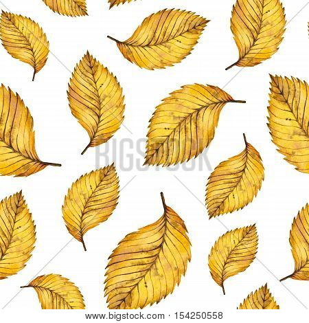 Watercolor seamless pattern autumn yellow leaves of elm, hand painted watercolour autumn background of falling leaf, design for fabric, textile, wrapping paper, card, invitation, wallpaper, web design