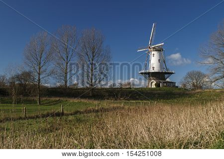 White windmill in Veere standing in the polder under winter sunlight.