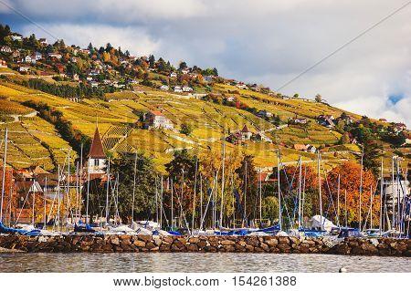 Autumn landscape of Lake Geneva, Lavaux vineyards, Switzerland