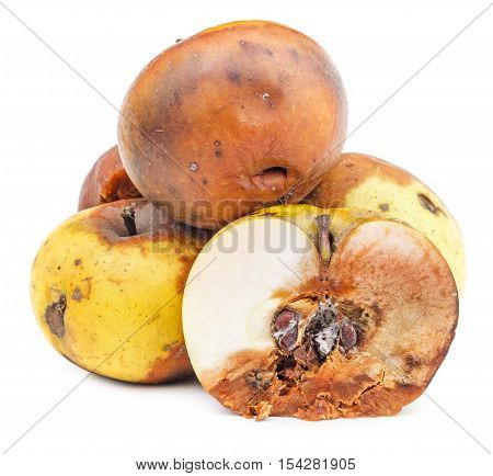 Rotten apples isolated on white background. Moldy vegetable.