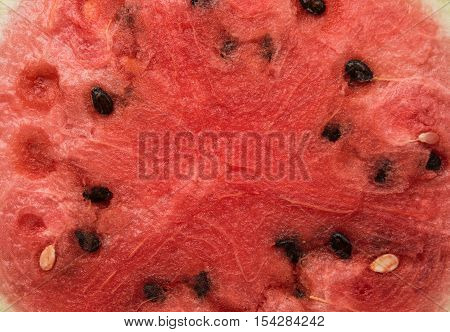 watermelon natura ecology fruit eating background closeup