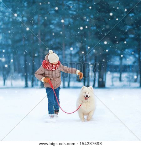 Christmas Happy Teenager Boy Running Playing With White Samoyed Dog On Snow In Winter Day, Flying Sn
