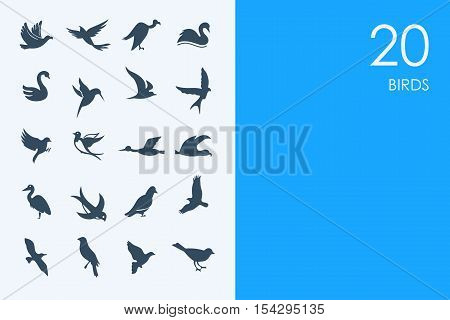 BLUE HAMSTER Library birds vector set of modern simple icons