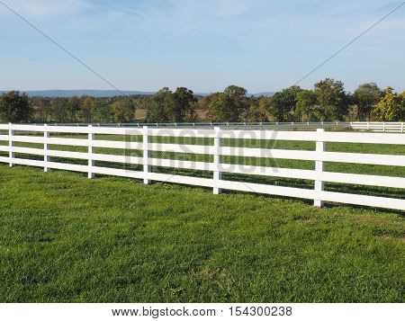 high white fence by a field of lush green grass