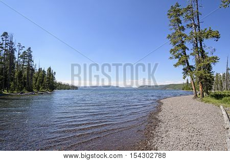 Shoshone Lake on a Sunny Day in Yellowstone National Park in Wyoming