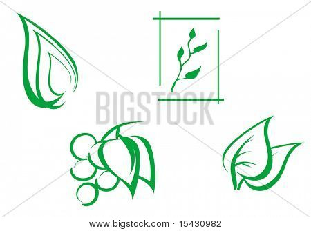 Jpeg version. Set of leaves symbols as a nature emblems. Vector version is also available