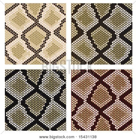 Vector version. Set of snake skin pattern for design or ornate. Jpeg version is also available