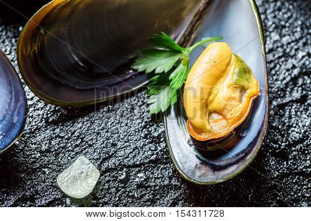 Closeup of cooking mussels with herbs on black rock