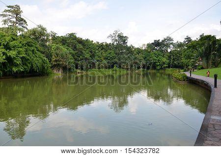 Lake In Singapore Botanic Garden