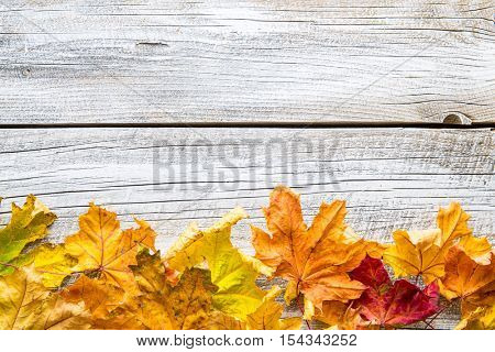 Colorful autumn leaves on old wooden table. Top view.