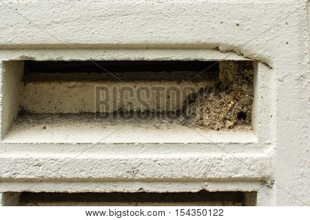 the resting place of wasp in the building