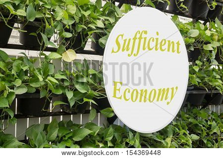 Exterior vertical green leaves garden stock photo