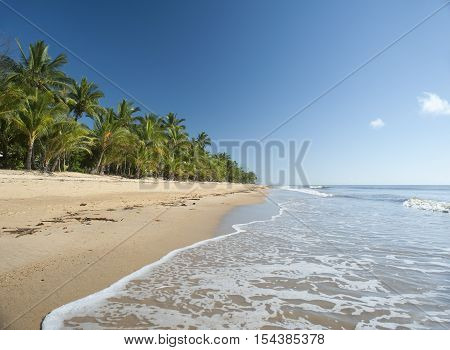 Idyllic tropical getaway at Mission Beach Queensland Australia with gentle surf lapping golden sand fringed with lush vegetation and palm trees