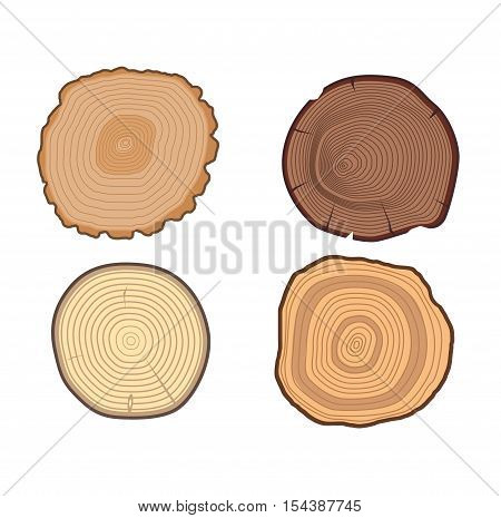Set of tree slices wood trunk section natural timber. Aging round tree slices lumber pattern ring isolated