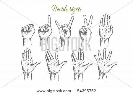 Vector hand drawn Hand signs concept sketch. Set of human palms with different gestures meaning different signs. Lettering Hands signs
