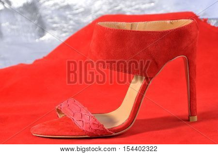 shoe or women sandal. heeled sandals on a colored background