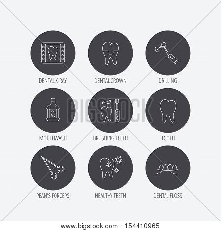 Stomatology, tooth and dental crown icons. X-ray, mouthwash and dental floss linear signs. Toothache, forceps icons. Linear icons in circle buttons. Flat web symbols. Vector