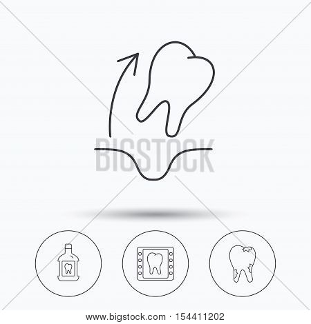 Tooth extraction, caries and mouthwash icons. Dental x-ray linear sign. Linear icons in circle buttons. Flat web symbols. Vector