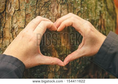 Female hands gesturing heart shape sign on tree trunk ecology and environment concept for nature lovers