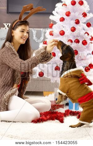 Young woman celebrating christmas with dog, playing by christmas tree, giving snack to pet.