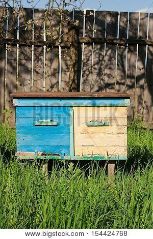 Beehives On The Fruit Garden In Ukraine.