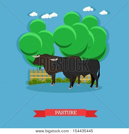 Vector concept poster of beef farm. Grazing cattle on a pasture.
