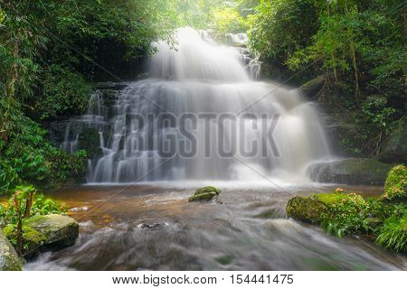 Amazing Beautiful Waterfalls And Dragonflowers In Deep Forest