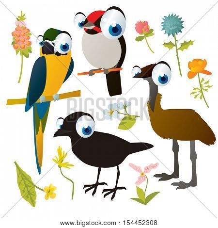 vector cute colorful cartoon isolated birds and flowers illustrations collection: crow, emu ostrich, macaw parrot, south american cardinal
