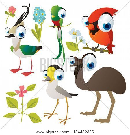 vector cute colorful cartoon isolated birds and flowers illustrations collection: cardinal, lapwing, quetzal, stilt, emu ostrich