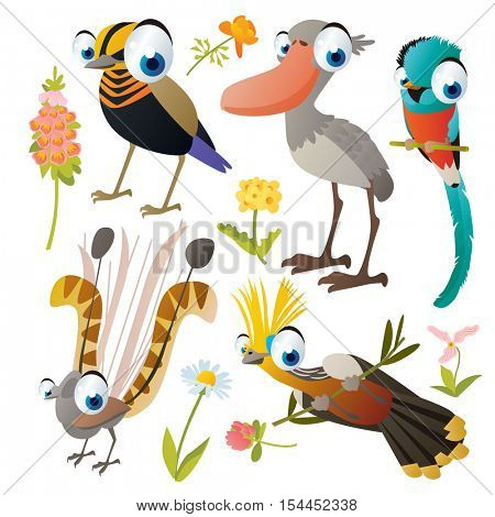 vector cute colorful cartoon isolated birds and flowers illustrations collection: lyre bird, quetzal, shoebill, hoatzin