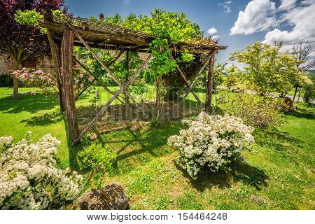 Old Wooden Pergola On A Farm In Tuscany
