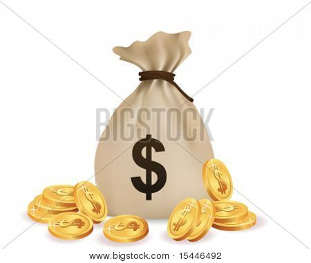 money bag with coin