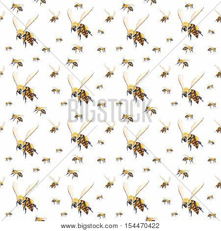 Seamless white background with sketched flying bees
