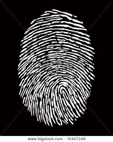Vector finger print.