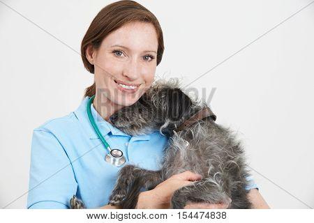 Studio Portrait Of Female Veterinary Surgeon Holding Lurcher Dog