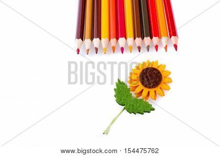 Color pencils and fake flower and fake flower on white background