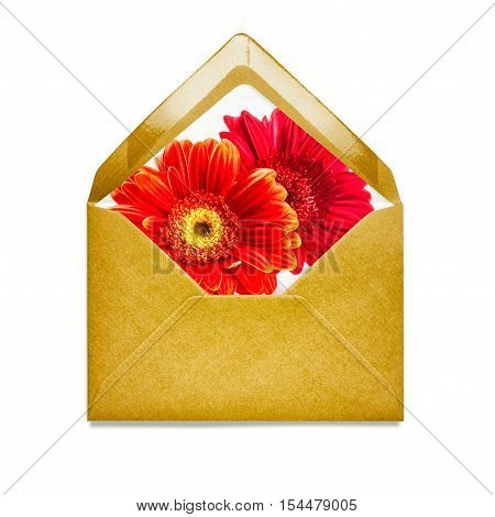 Yellow envelope with gerbera daisy flowers. Single object isolated on white background clipping path included. Floral design elements