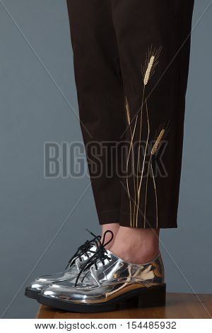 Elegant Women's Leg In Silver Boots And Brown Pants