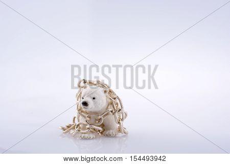 Polar Bear Cub In Chain