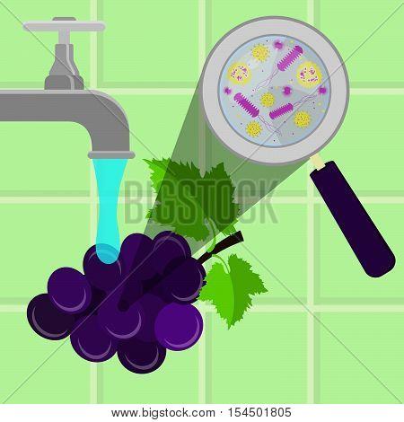 Washing Contaminated Grape