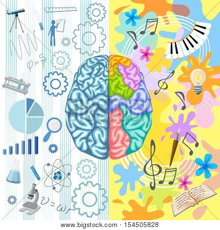 Creative brain composition with half brain of techies and half brain of humanities vector illustration