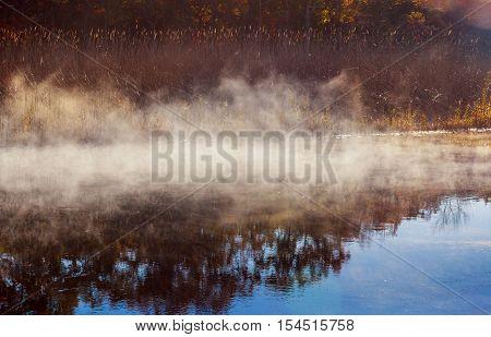 Autumn mist in a rainforest autumn mist river