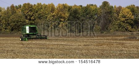 Brockville, ON, October 7, 2016 -- Wide view of large green combine harvester clearing and seeding a grain field near Brockville, Ontario, on a bright sunny cloudless day in October