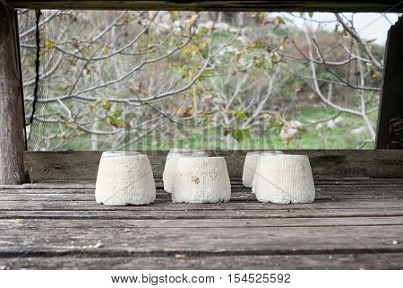 ricotta salata is salted variety of ricotta whey cheese; in the photo it is placed in outdoor to dry in a specific cage that protects it from the insects,  Nebrodi Park - Sicily
