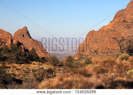 Desert Wilderness in Big Bend National Park, Texas