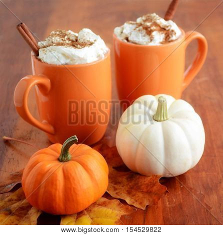 Two pumpkin lattes in orange mugs with orange and white mini pumpkins shot in natural light. Very shallow depth of field with focus on stem of orange pumpkin