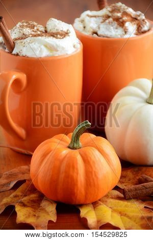 Two pumpkin lattes in orange mugs with orange and white mini pumpkins shot in natural light. Very shallow depth of field with focus on stem of orange pumpkin.